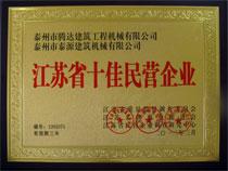 江苏省十佳民营企业